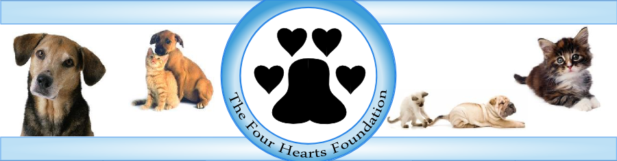 Four Hearts Foundation